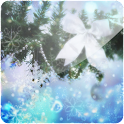 3D Christmas Beauty (PRO) logo