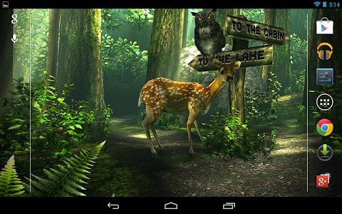 Forest HD screenshot 16