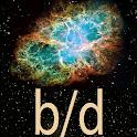 b/d Reversal icon