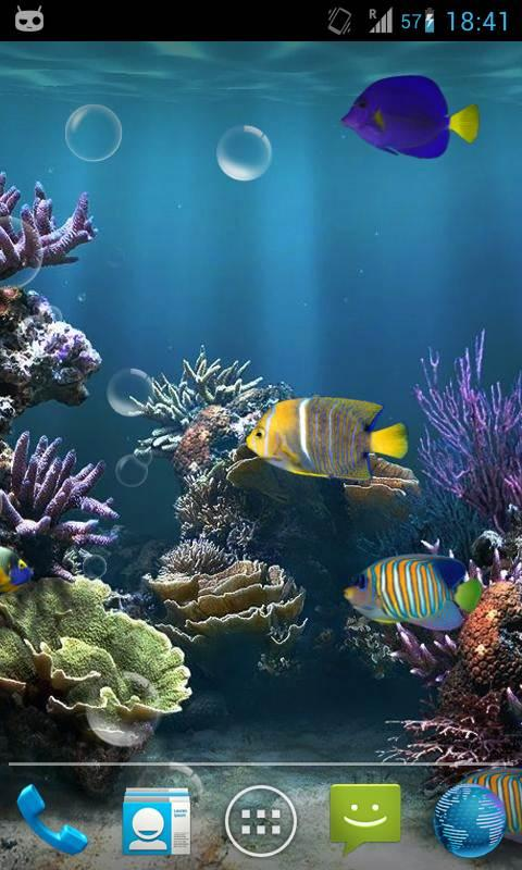 Fish aquarium live wallpaper android apps on google play for Live fish wallpaper
