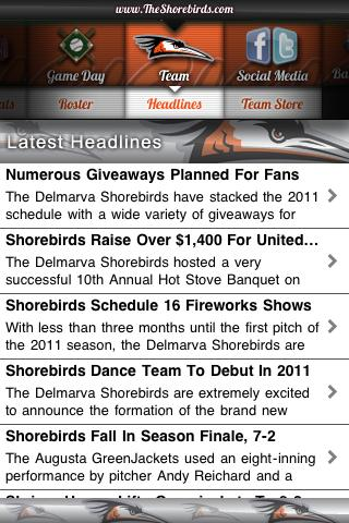 Delmarva Shorebirds - screenshot