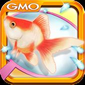 Gold Fish Scoop Mania