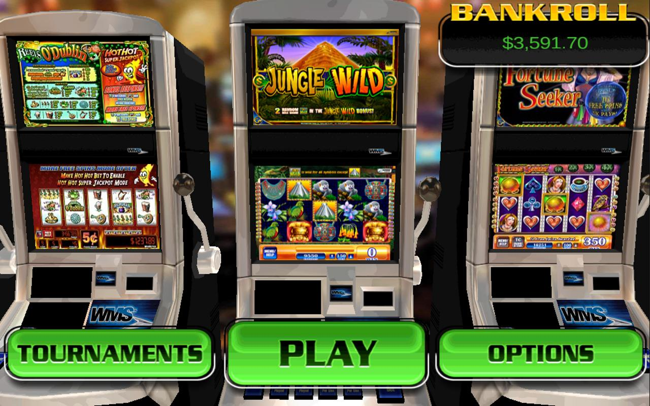 Jungle Wild - HD Slot Machine- screenshot