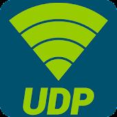 UDP Sender