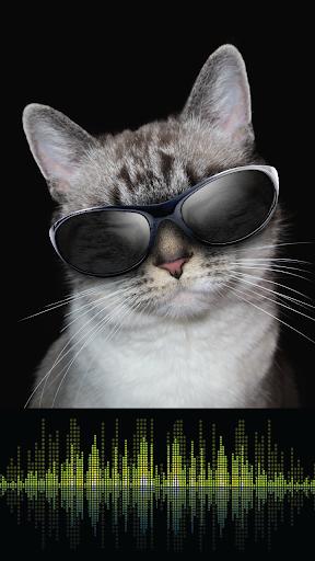 Cute Cat Games