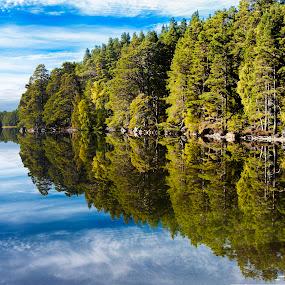 Loch Garten by Jacek Steplewski - Landscapes Waterscapes ( clouds, water, scotland, water reflection, waterscape, reflections, trees, forest, lake, landscape )