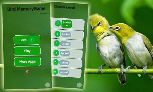 Bird Memory Game