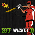 Hit Wicket Cricket 2017 World icon