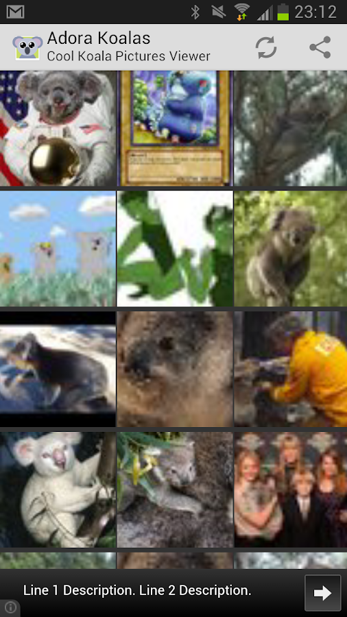 Adora Koalas - Koala Pictures - screenshot