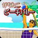 がちんこビーチバレー icon