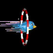 Stunt Bird