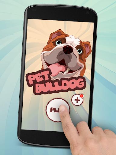 개 Bulldog Pet Dog 3D