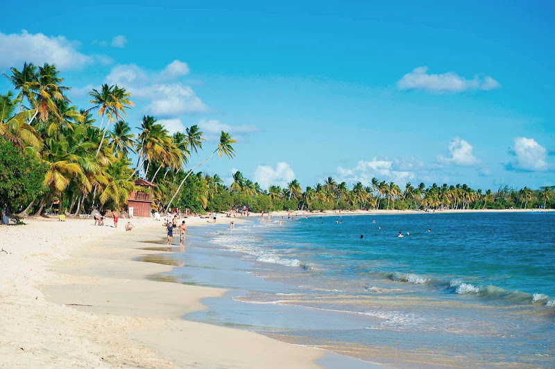 The scenic, sandy coves of Grande Anse des Salines Beach at Sainte-Anne in southern Martinique.