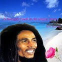 Bob Marley Go Locker icon