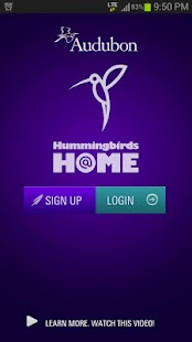 Audubon Hummingbirds At Home- screenshot thumbnail