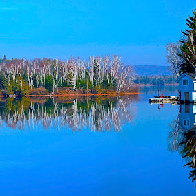 Double Decker Cottage by David W Hubbs - Landscapes Forests ( waterscape, trees, blue water, mirror image, lake,  )