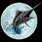 Big Night Fishing 3D icon