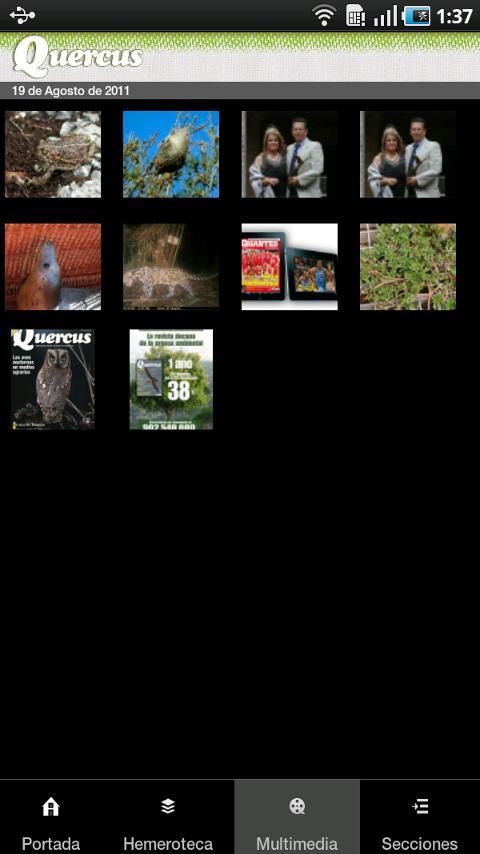 Quercus- screenshot