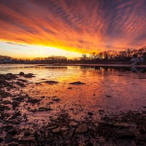 Muddy Sunset by Jeff Klein - Landscapes Sunsets & Sunrises ( time, mud, colors, norwalk, sunset, rowayton, landscape, low )