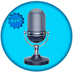Translate voice - Pro 10.2