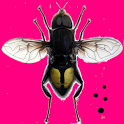 zzz ... Fly Catcher icon