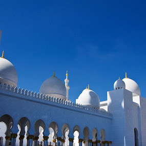 Grand Mosque by J Delos Santos - Buildings & Architecture Places of Worship (  )