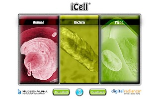 Screenshot of iCell