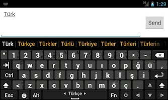 Screenshot of Turkish dictionary (Türkçe)