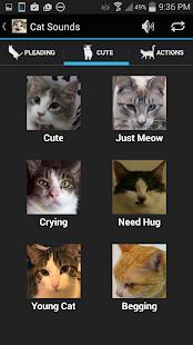 Cat Sounds - screenshot thumbnail