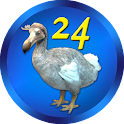 "DoDo - Game ""24"" with extras"
