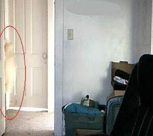 写真では 本当の幽霊
