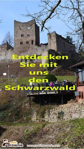 Schwarzwald erleben