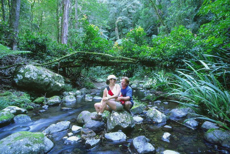 A couple on the Brindle Creek Walk at Border Ranges National Park, Northern Rivers, New South Wales, Australia.