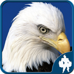 Birds Jigsaw Puzzles Game for PC and MAC