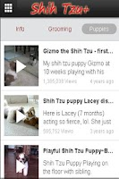 Screenshot of Shih Tzu+