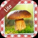 Pilze sammeln & bestimmen LITE icon