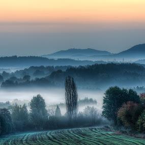 Morning mist  by Miroslav Havelka - Landscapes Sunsets & Sunrises ( vlhošť, sunset, valley, landscape, morning, emotion, fields, mist )
