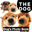 THE DOG Photo Book Shiba icon
