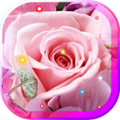 Flowers Love HD live wallpaper