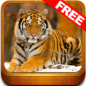 Wonder Animals Zoo Free Game