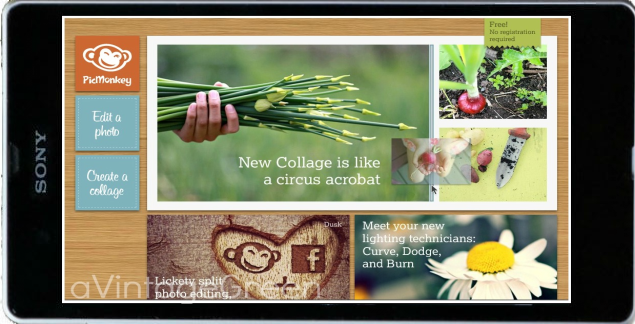 Picmonkey official site share the knownledge