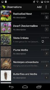 iNaturalist - screenshot thumbnail