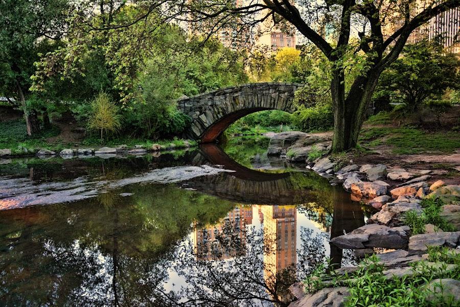 Searching for the bridges by Sandra Maldonado - City,  Street & Park  City Parks ( bridge, nyc, central park )