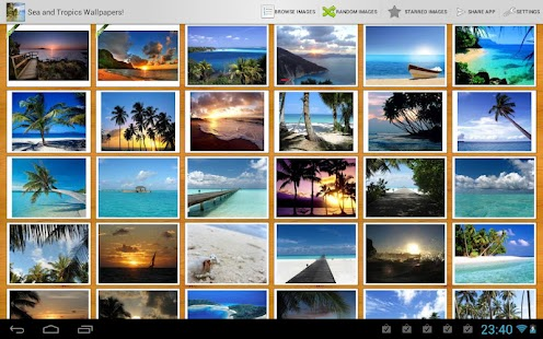 Bluestacks Android | Applications | Apk | Files