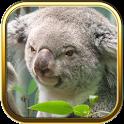 Australia Puzzle Games icon
