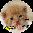 Cat Call icon