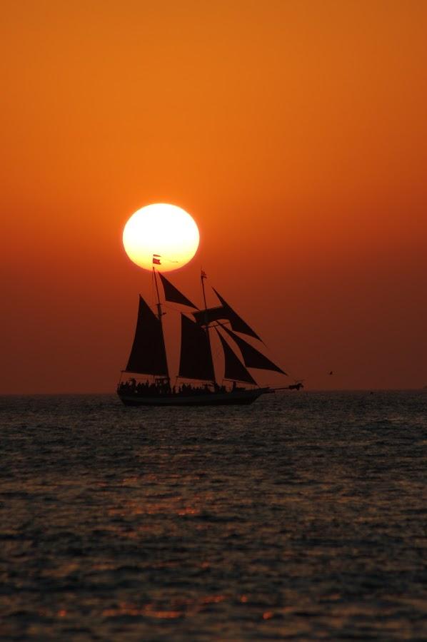 Sailing at Sunset by Tony Moore - Landscapes Sunsets & Sunrises ( sepia, keys, silhouette, ocean, key west, boat, sailboat, nightfall, sun, sailing, sunset, summer, fireball,  )