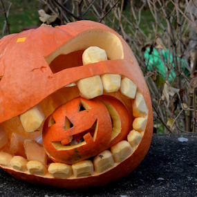 by Kristina Nutautiene - Public Holidays Halloween ( halloween, pumpkin, carved,  )