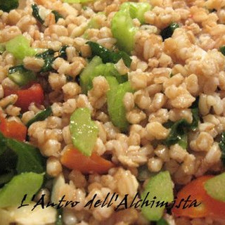 Cold Hulled Wheat Salad.
