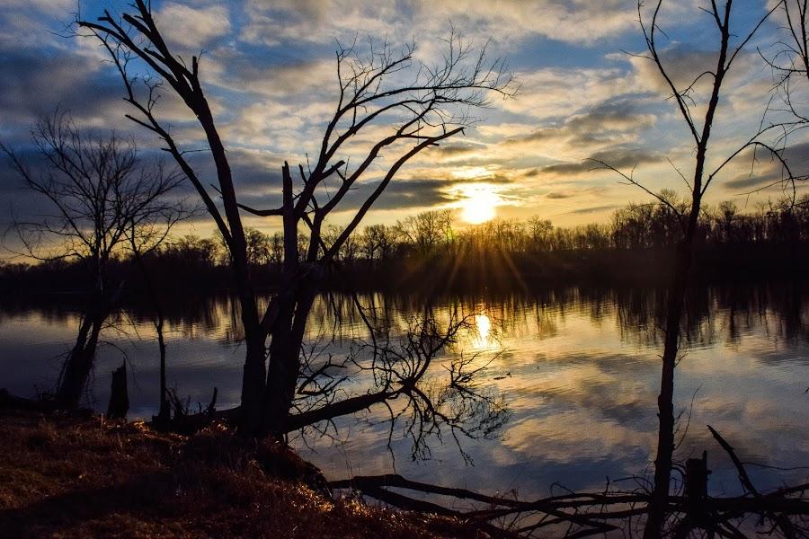 rock river sunrise by Jason Lockhart - Landscapes Sunsets & Sunrises ( clouds, wisconsin, grass, clam, fort atkinson, trees, rock river, sunrise )